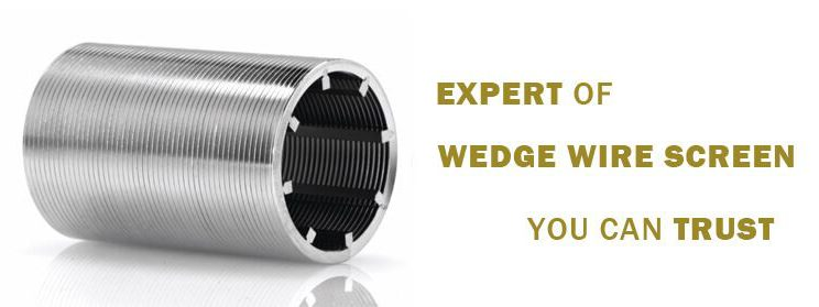 wedge wire strainer